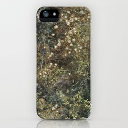 rabbit mountain (2) iPhone Case