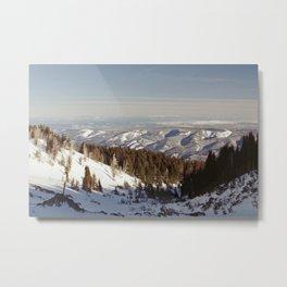 Timberline Metal Print