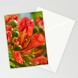 Red flame tree 290 Stationery Cards