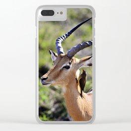 Wildlife Gossip Clear iPhone Case
