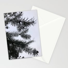 Silver Fir Abies Alba Abstract Stationery Cards