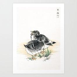 Couple Of Ducks - Vintage Japanese Woodblock Print Art By Numata Kashu (1885) Art Print
