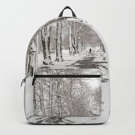 winter walk Backpack