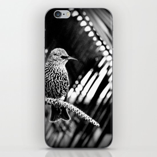 natural patterns iPhone & iPod Skin