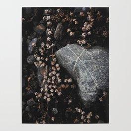 Wildflower Series - Tasman Glacier Poster