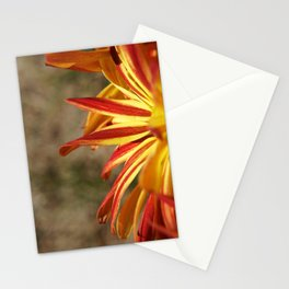 Sunsets in the Garden Stationery Cards
