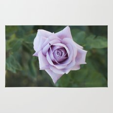 Rosa Rug