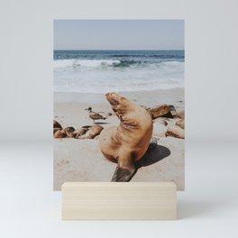 sea lion at the beach ii Mini Art Print