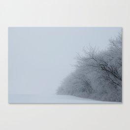 The Air Canvas Print