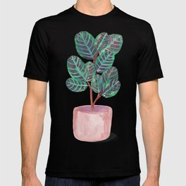 Calathea Peacock Plant Watercolor T-shirt