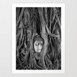 its complicated - vine buddha Art Print