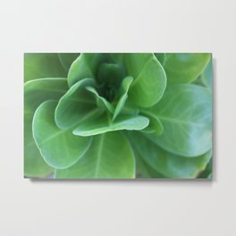 Tropical Sea Greens Metal Print
