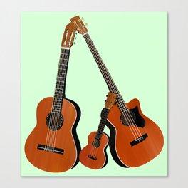 Acoustic instruments Canvas Print