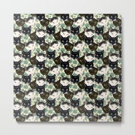 Multicolor Kitty Cats with Pachysandra Leaves Metal Print