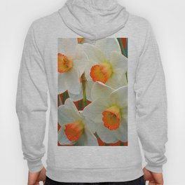 WHITE-GOLD NARCISSUS FLOWERS BLUE-BROWN Hoody