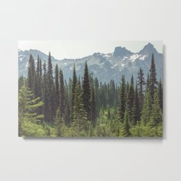 Escape to the Wilds - Nature Photography Metal Print