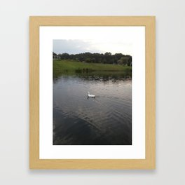 duck Framed Art Print