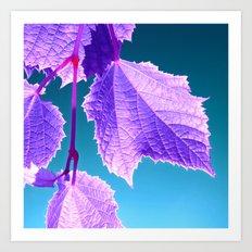 purple wine leaf Art Print