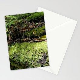 Rainforest Ferns & Moss Stationery Cards