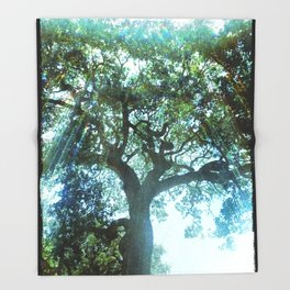Ramona Oak Tree Throw Blanket