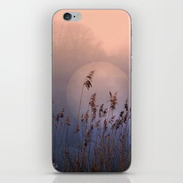 Lake with heart iPhone Skin