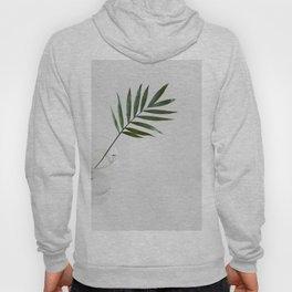 Minimalist Mid Century Modern Scandinavian Palm Leaf In Clear Glass Hoody