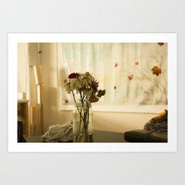 Soft warm flowers in studio Art Print