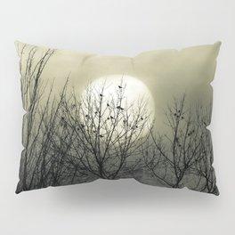 Winter Into Spring Pillow Sham