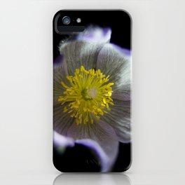 Night Crocus iPhone Case