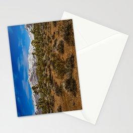 Desert Snow - 4936 Stationery Cards