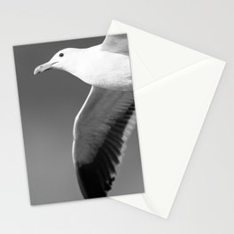 Flying seagull in black and white Stationery Cards