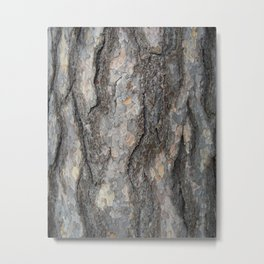 pine tree bark - scale pattern Metal Print