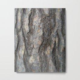 pine tree bark - scale pattern Metal Print