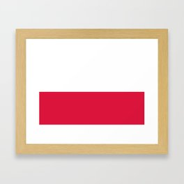 Flag of Poland - Authentic (High Quality Image) Framed Art Print