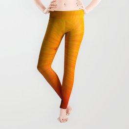 Honey Blossom Leggings