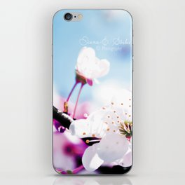 Dreamwalk iPhone Skin