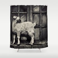 goat Shower Curtains featuring Goat by Agustina Lusky