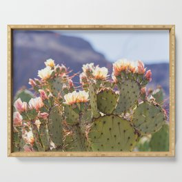 Prickly Pear Cactus Blooms, II Serving Tray