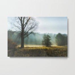 Foggy morning Metal Print