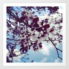 Bloomin' Blossoms Art Print