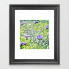 Poppy Anemone Framed Art Print