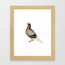 Le Pigeon Framed Art Print