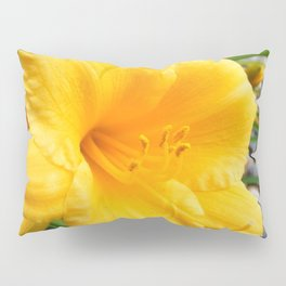 Yellow Flower Pillow Sham