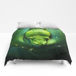 Emerald Tree Boa Comforters