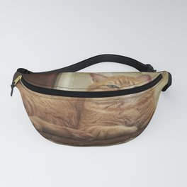 Cattitude Is Everything. Fanny Pack