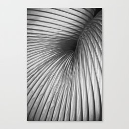 Abstraction Extraction Canvas Print