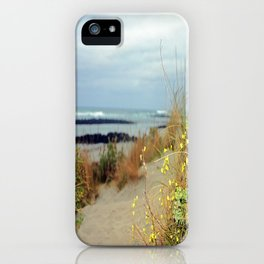 Killarney Coastline iPhone Case