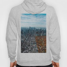 New York in Fall Hoody