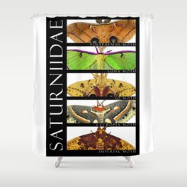 Moths of North America Shower Curtain