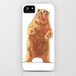 Cute Bear  iPhone Case